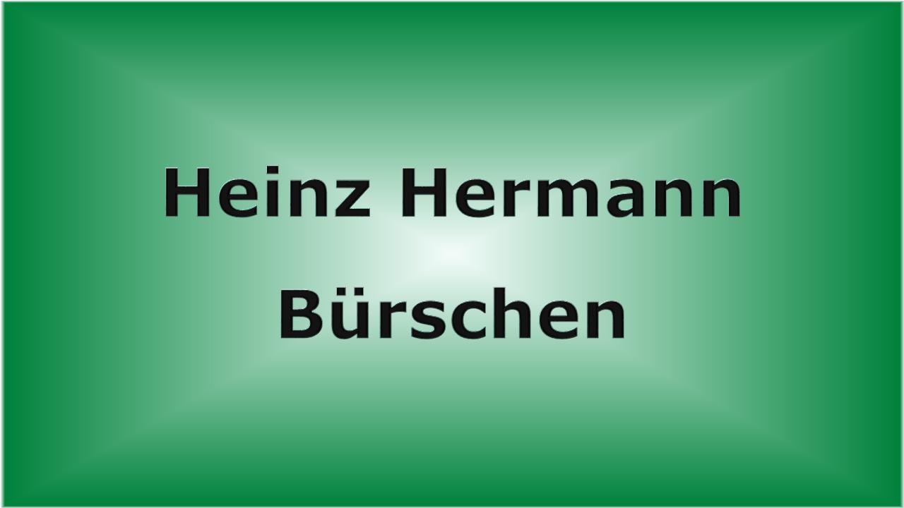 Heinz Hermann